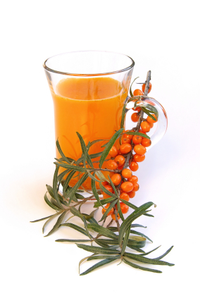 Sea buckthorn is a Scandinavian vitamin bomb