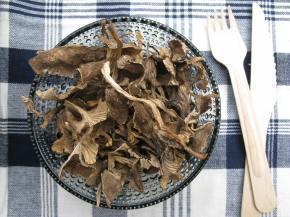 Creamy forest mushroomsauce